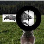 Игра Тренировка охоты на кабана